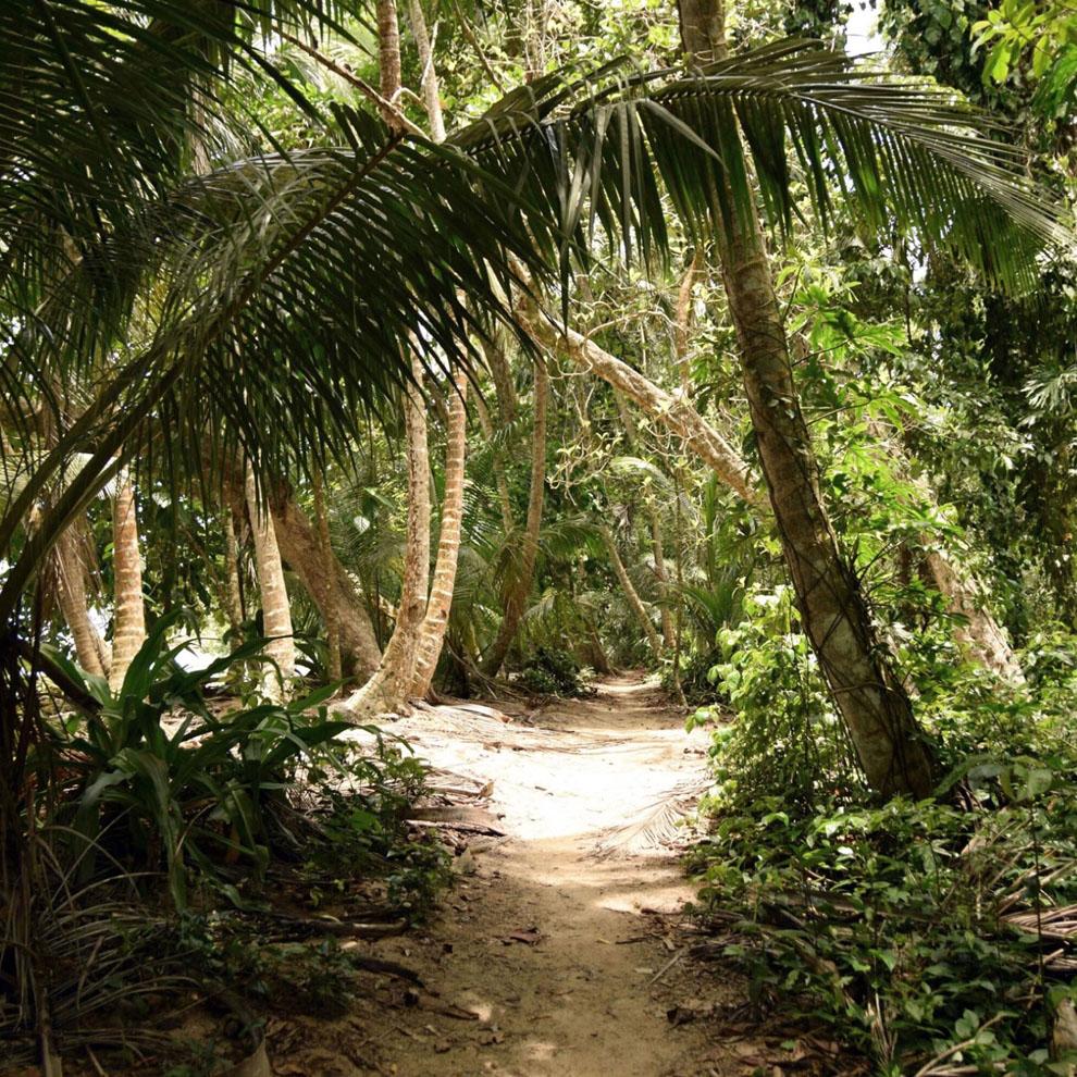Joia Beach Joia Trail Found